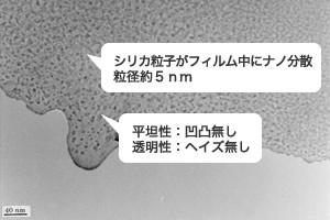 ポミランの透過型電子顕微鏡(TEM)画像